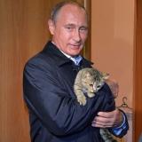 Путин и кошка